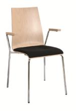 Sitzpolster und Armlehne
